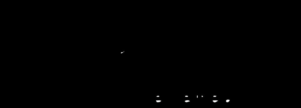 logo-PEW-1000x400