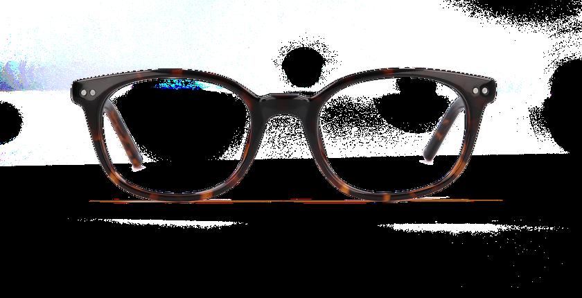 zenka 7